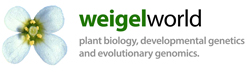 Weigelworld Logo